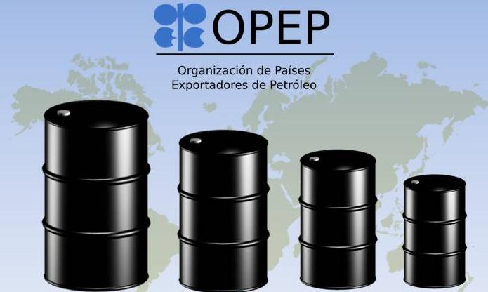Ecarri: La OPEP descertifica a Venezuela como país petrolero debido a la  baja producción - Noticias de Barquisimeto - PromarTV
