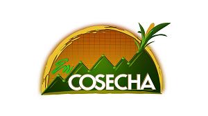 En_Cosecha